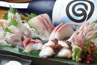 獲れたての鮮魚をお刺身で堪能『おまかせ五種盛合せ』