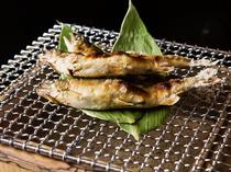 川魚の濃厚な旨みと強めの塩気で酒が進む『鮎の塩焼き』