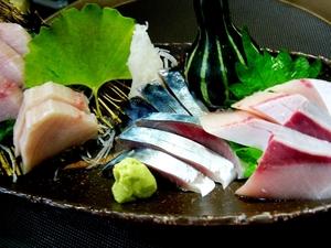 【9月・10月限定】魚と野菜にこだわって仕立てる『黒潮コース』(2時間30分 飲み放題付5,000円)