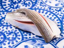 美しい姿も【きすけ】の鮨の真骨頂『小肌』