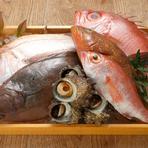料理長が自ら境港の市場に出向いて実際に見、目利きして仕入れる旬の魚介類。写真はキンメダイ、黄かな、アジ、カレイ、サザエ、のどぐろなどの旬魚です。季節や仕入れで内容が変わるのが嬉しい。