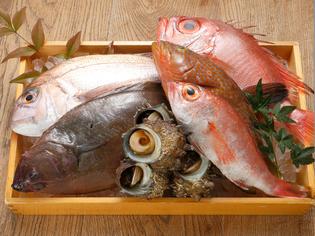 境港で水揚げされた旬の魚介類を、料理長自ら厳選