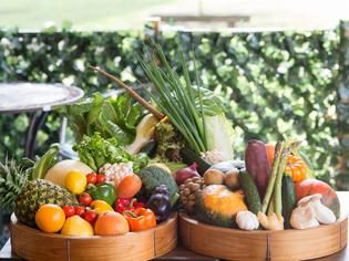 新鮮食材、旬の食材を厳選。顔の見える食材で季節の味をお届け
