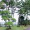 ホテル6階にいることを忘れさせる、博多湾を一望する日本庭園