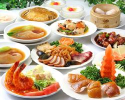 中国四大大陸のエッセンスと高級食材が織り成すコース! お料理のみのご利用も可能です