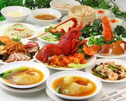 ふかひれの姿煮や北京ダックを始めとした、季節の食材と究極の食材を共にコラボレーション!
