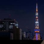 特別な日のディナーに花を添える、東京の夜景