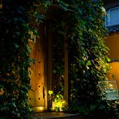 木を基調とした神秘的な外観の一軒家バー