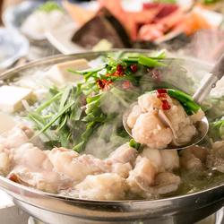 旬のお刺身盛りやもつ鍋、大山地鶏などの食べ応えのあるメニューが揃う贅沢コース