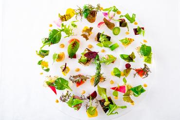 通年でお出しする、お店で一番人気のメニュー『有機野菜と魚介のサラダ』