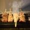 東京では珍しい「にいがた地鶏」を使用。職人技で焼き上げる