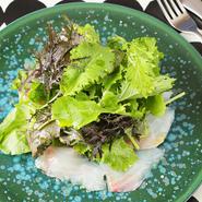 毎日変わる魚で味わうカルパッチョ。この日は、和歌山県からの石鯛が登場しました。野菜は朝採りの無農薬野菜を使用。その日限りの限定の一皿は格別の味わいです。オリジナルドレッシングで召し上がれ。