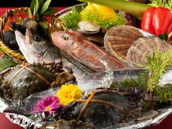 パリっと北京ダックがうまい!旨味たっぷり魚の姿蒸し等含む贅沢なコースです!飲み放題付!
