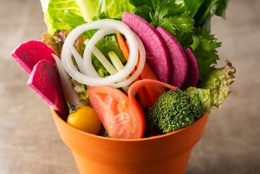 野菜たっぷり農園サラダ