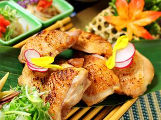 健康で美味しい鶏肉。鳥取県産の銘柄鶏「大山どり」
