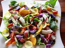 旬の恵みを届ける『季節のお野菜たっぷりサラダ』