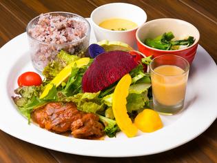 完全オーガニックを目指して。契約農家から直送される新鮮野菜