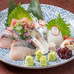 料理長厳選のお刺身がメインのコース 厳選した食材を使用。楽しくお料理お酒を召し上がっていただけます。