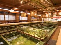 大きな生け簀には、九州の新鮮な海の幸