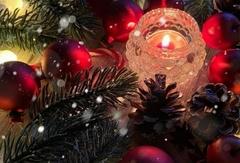 Xmasの夜を鮮やかに彩る、格別のディナーコースをご用意。特別な時間をお楽しみ下さい。