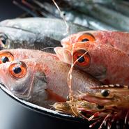 【灘や】の天然ものの鮮魚の魚種の豊富さは、店主鬼武氏が漁師経験を活かし、日々仕入れに奮闘しているから。「活きのよさ」がご馳走です。
