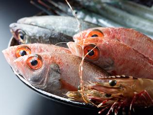 漁師ネットワークを駆使して「天然もの」だけを仕入れ