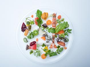 唐津の魚介類と自然栽培野菜がひと皿になった『海の幸のサラダ』
