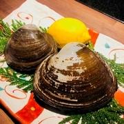 通常の2倍以上のサイズの活ホッキ貝です!ここまでのサイズはなかなかお目にかかれません!お刺身またはバター焼きでお召し上がりいただけます!