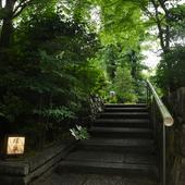 木々が奏でる音、風、匂いを感じながら、石畳を進む道も風情あり