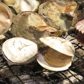 活貝命の老舗水産会社が全国から集めた貝の食べ放題
