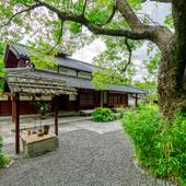 京都南禅寺などを手掛けた「植彌加藤造園」作の庭園