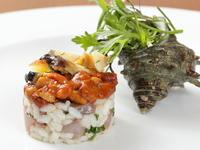 伊豆のサザエと地魚、北海道厚岸産のウニを使用した、イタリア産カルナローリ米の漁師風サラダ