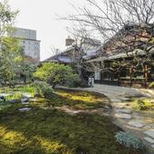 訪れる季節ごとに楽しめる、春夏秋冬の景色が美しい日本庭園