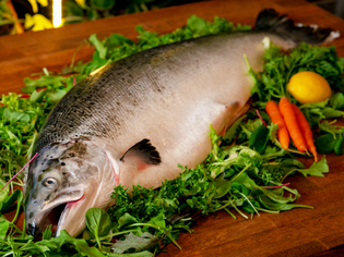 時期に合わせて美味しい産地の鮭を厳選。いろいろな料理に