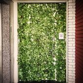 緑に覆われた扉を開けて、魅惑の隠れ家へ