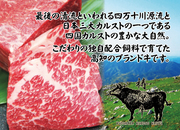 四万十川源流と四国カルストの自然豊かな地で育った「梼原牛」!! やわらかな肉質とほのかに甘みのある脂身を存分に味わえる贅沢なステーキディナーコースが新登場♪♪ お気軽にお問合せください♪
