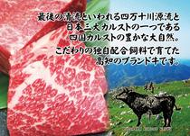 [12/19より新登場]梼原牛選べるステーキディナーコース
