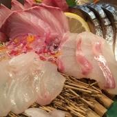 新鮮ならではの美味しさに、お酒が進む『旬の鮮魚五種盛り合わせ』