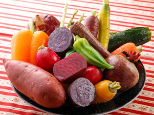 「知多半島有機野菜」をはじめとした、地場の良質な素材たち