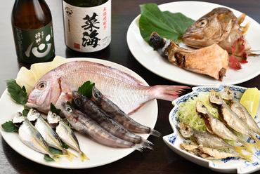 高知屋の魚や取引漁港の魚を使った『新鮮な魚料理』