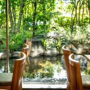 掃き出し窓から見える眺めは緑きらめく日本庭園。四季の自然を眺めながら極上の日本料理が味わえます。