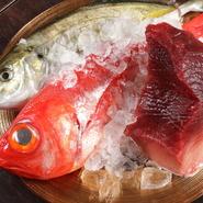 魚介類は市場に週3~4回行って、目利きして仕入れてくるから、鮮度の良さは折り紙付き。丸のまま仕入れた魚を、店で丁寧に捌いて、さまざまな調理法で提供してくれます。