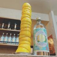 キンミヤ焼酎ボトルと大分産レモン10切れ、ソーダおかわり自由のおトクすぎる「れもんパーティー」♪ 絞り終えたレモンの皮は高く積み上げレモンタワーにしてください! レモンサワー発祥の地の伝統です★