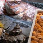 毎朝、店主自ら鹿児島市内の市場に出向いて仕入れた、新鮮な海鮮食材の数々。その時期に一番おいしい旬の食材にこだわって仕入れ、素材の味を活かした料理を提供してくれます。