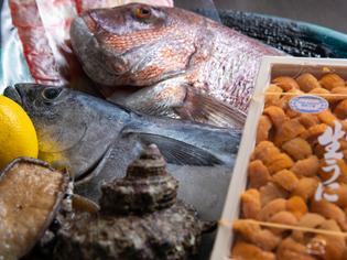 料理には、店主自ら目利きで選ぶ、旬の海鮮食材を使用