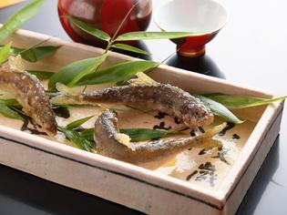 四季が移り変わる瞬間を味わえる「旬菜・旬魚」