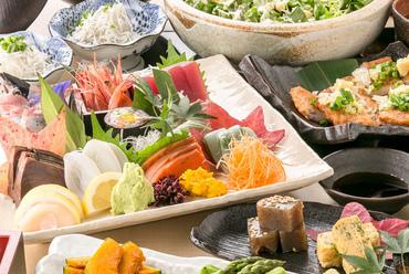 全国から仕入れた旬の魚介をたっぷり食べられる、食べ放題&飲み放題コース料理をどうぞ!