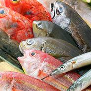 """当店にお越しの際はまずは『鮮魚のお造り宝石箱』をご注文下さい。新鮮な魚のお造りは、まさに""""海の宝石箱""""…魚本来の旨みを愉しんでいただきたい想いから、毎朝仕入れる朝採れ鮮魚を贅沢にお造りでご提供しております。※日によって内容が異なる場合がございます。"""