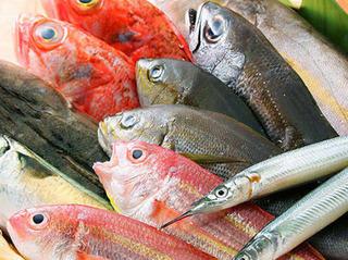 熟練の目利きが厳選する朝採れ鮮魚