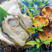 瀬戸内で獲れたぷりぷりの身を召し上がれ『瀬戸内産 岩牡蛎』